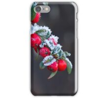 Red Berries With Frost iPhone Case/Skin