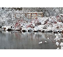 The pond, the snow, and the footbridge Photographic Print
