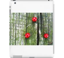 Berries Triangle  iPad Case/Skin