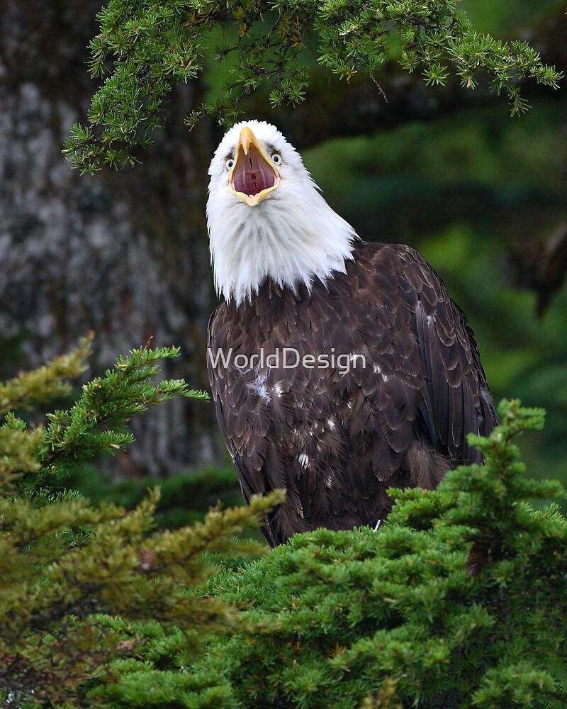 Eagle Screaming by William C. Gladish, World Design
