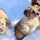 Snow Dancing- Little Sapling Gang by goldnzrule
