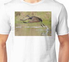 Limpkin Takeoff Unisex T-Shirt