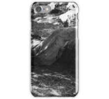 After The Hunt iPhone Case/Skin