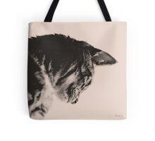 Fine art cat print Tote Bag