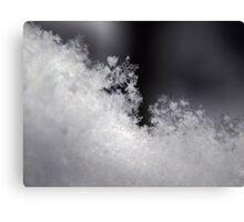Macro Snowflake (5844) Canvas Print