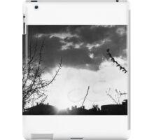 Evening In The Neighborhood iPad Case/Skin