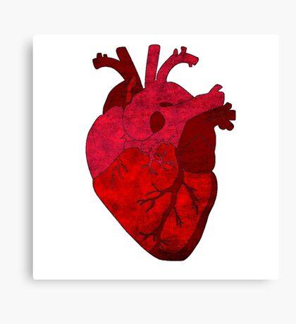 Human heart. Canvas Print