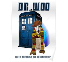 Dr woo  Poster