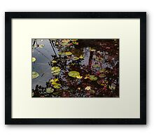Fall Pond Reflections - a Story of Waterlilies and Japanese Maple Trees - Take One Framed Print