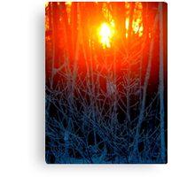 Frosty Sunrise (6285) Canvas Print