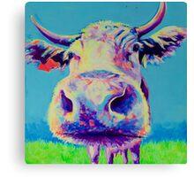 Alberta Cow Canvas Print