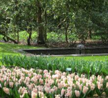 Beds of Red Tulips and Pink Hyacinths - Keukenhof Gardens Sticker