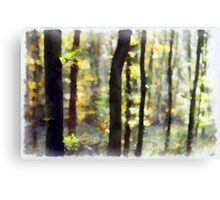 Watery Woods Canvas Print