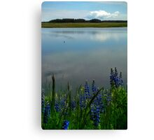 Early Summer on Grand Mesa Canvas Print