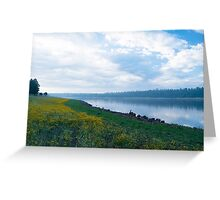 Misty Morning Greeting Card
