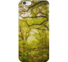New Zealand Walk iPhone Case/Skin