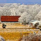 Country Charm ~  by NatureGreeting Cards ©ccwri