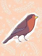 Robin by Amy Bouchard