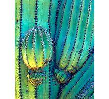 Neon Saguaro Photographic Print