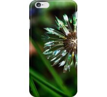 Dandelion Will Make You Wise iPhone Case/Skin