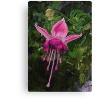 Dancing Pink Fuscia Canvas Print