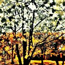 Wild Suburban Sidewalk Forest by Andy Rhodes
