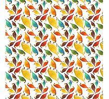 Bird Pattern Illustration Photographic Print