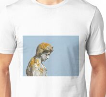 Statue with Lichen Unisex T-Shirt