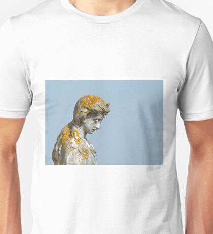 Statue with Lichen Unisex T-Shirt