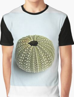 Sea Urchin Shell Graphic T-Shirt