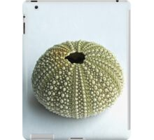 Sea Urchin Shell iPad Case/Skin