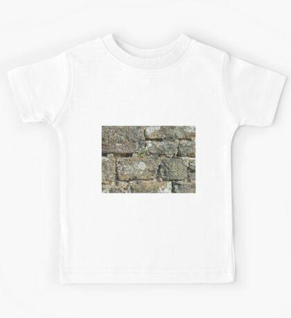 Stone Wall Kids Tee