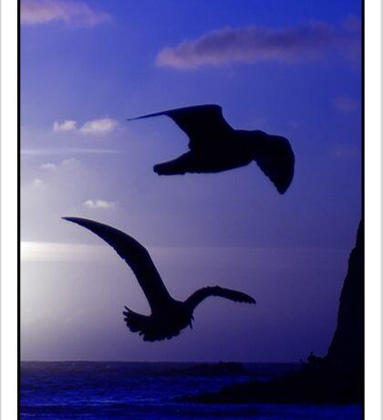 the double bird blues Sticker