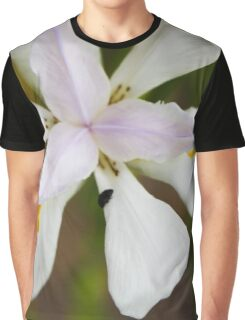 Beetle on Flower.  Graphic T-Shirt