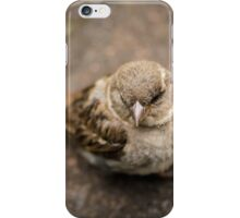 Baby Sparrow iPhone Case/Skin