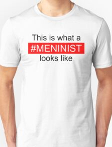 This is what a meninist looks like T-Shirt