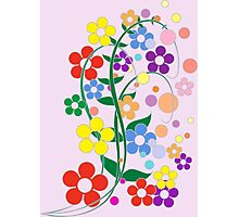 Flowers in spring colors. Photographic Print