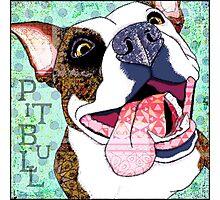 Pitbull Photographic Print