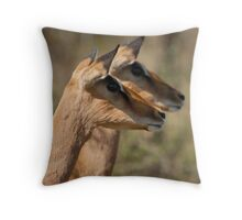 Impala in Kwazulu-Natal South Africa Throw Pillow