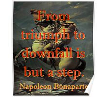 From Triumph To Downfall - Napoleon Poster