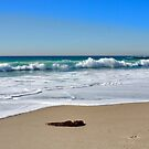 Turquoise Waters Of Aliso Beach by K D Graves Photography