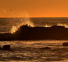 Wave Splash At Sunset by K D Graves Photography