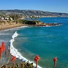 Paradise In Laguna Beach by K D Graves Photography