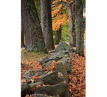 Autumn leaves on a New England stone wall Photographic Print
