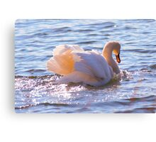 Going Gracefully Canvas Print