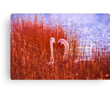 Behind The Reeds Canvas Print