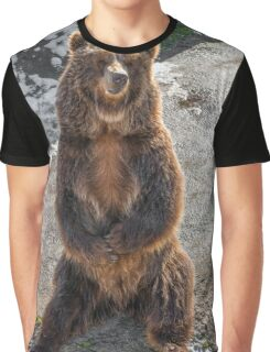 Brown  grizzly bear on a rock Graphic T-Shirt