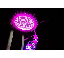 Light Flower Photographic Print