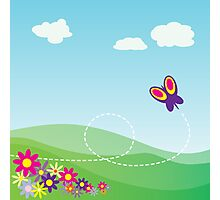 Butterfly Background Photographic Print