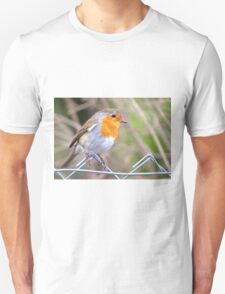 Robin Perching On Wire Fence T-Shirt